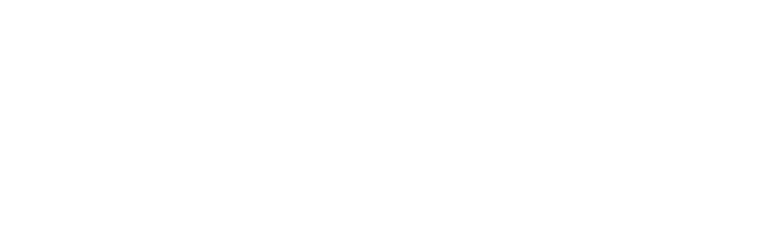 Vestal Group